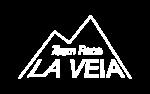 veila_logo